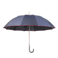 雨中鸟晴雨伞