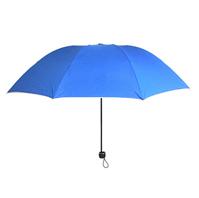 雨中鸟晴雨折叠伞