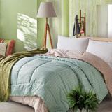 喜芙妮(SOFTNIE)家纺床上用品 丽彩眠四季子母被子 丽彩眠1500g+1850g 200*23