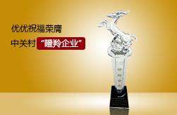 """020文创电商平台——优优祝福荣膺""""瞪羚企业"""""""